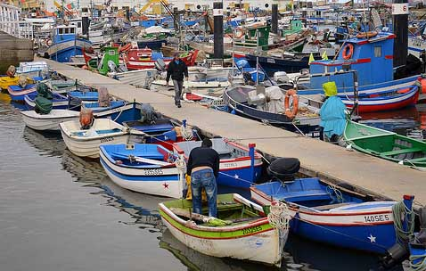 Setubal Fishing Harbour